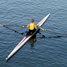 Rowing solo by Anita Berghoef - Sports & Fitness Watersports ( water, reflection, watersports, solo, rowing, sports, summer )
