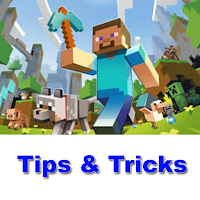 Screenshot of The Best Tips For Minecraft
