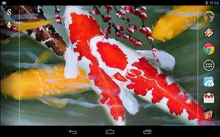 Screenshot of Galaxy Interactive Koi Fish