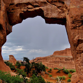 Pine Tree Arch After the Rain by Erin Czech - Landscapes Caves & Formations ( arches national park, arch, sandstone, rock formation, rain )