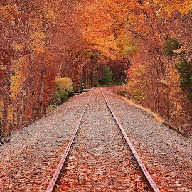 by Jeff London - Transportation Railway Tracks