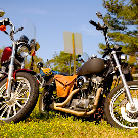 Nice Motorcycles by Marie Anderson - Transportation Motorcycles ( harley davidson, motorcycle, transportation )