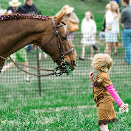 Aww and Awe by Andrew Hale - Babies & Children Children Candids ( meeting, horse, show horse, cowgirl, i want a pony )