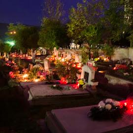 All Hallows Eve by Klárik Loránd - News & Events World Events ( eve, died, all hallows eve, night, halloween )