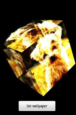 三維可愛的小狗
