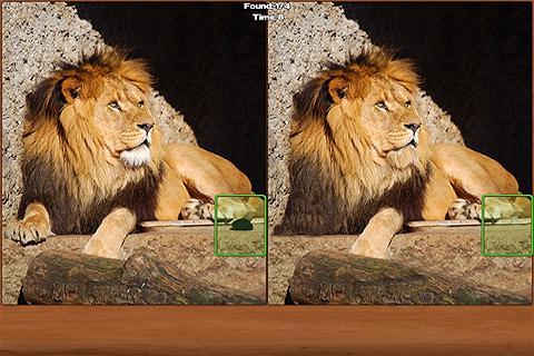 Safari Spot the Difference