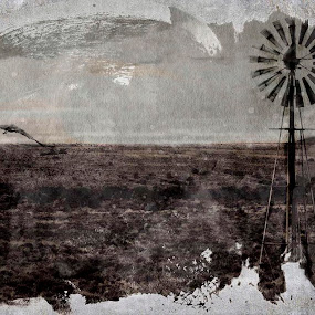 East Cape WIndmills by AZilba Fotografika - Landscapes Prairies, Meadows & Fields ( alternative photography, east cape, south africa, gum print, windmills, landscape )