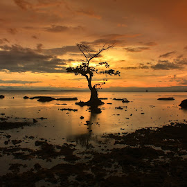 Sendiriku menyapa senja by Edwin Prihartanto - Landscapes Sunsets & Sunrises