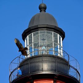 Ponce Inlet Lighthouse by Bill Telkamp - Buildings & Architecture Public & Historical ( lighthouse, seaside, historic )