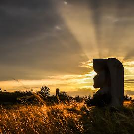 Sculpture in sunset. by Christian Krammer - Landscapes Sunsets & Sunrises ( sculpture, backlight, burgenland, sunset, summer, landscape, austria,  )