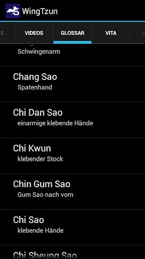 Wing Tzun - screenshot