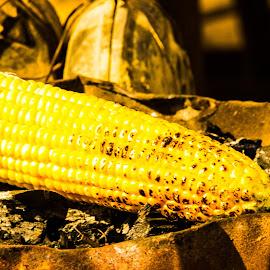 Corn on the Road by Avanish Dureha - Food & Drink Cooking & Baking ( rann of kutch, gujrat, dureha@gmail.com, incredible india, india, avanish dureha )