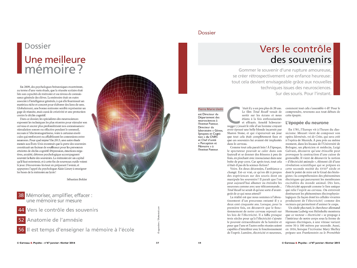 Cerveau & Psycho Screenshot 2