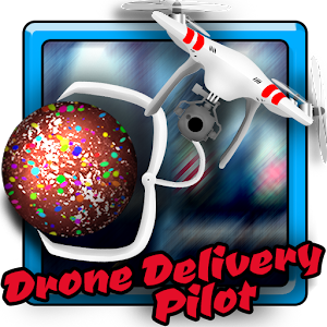 Drone Delivery Pilot