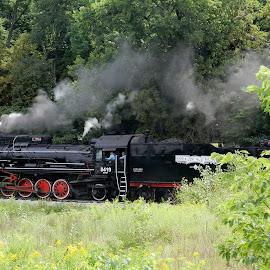 Steam Engine by Jolene Erickson - Transportation Trains ( transporation, engine, train, antique, steam )