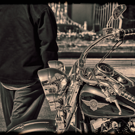 THE RIDER by Dim Pol - Transportation Motorcycles ( d, p, o, l, m, i,  )