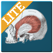 App Muscle Memory Lite APK for Windows Phone