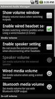 Screenshot of Advanced Audio Manager