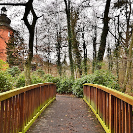 Old wooden bridge by Antoni Jordaan - City,  Street & Park  Historic Districts ( tower, park, forest, castle, bridge )