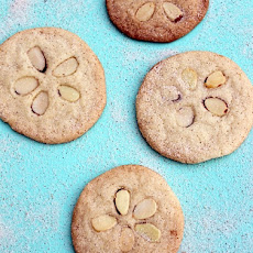 Easy Sand Dollar Cookies