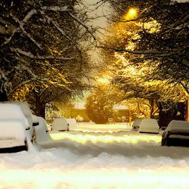 Warm Snow by Justin Quinn - City,  Street & Park  Neighborhoods ( holiday, oregon, winter, nature, snow,  )