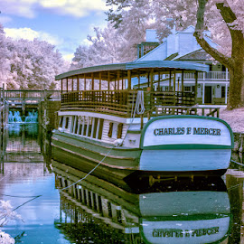 Mule boat by Izzy Kapetanovic - Transportation Boats ( ir, reflection, waterscape, infrared, trees, landscape, boat )
