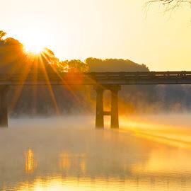 Morning On High Rock Lake by Roy Walter - Landscapes Sunsets & Sunrises ( lake, sunrise, morning, landscape )