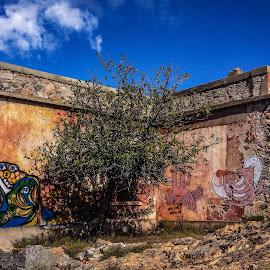 Casa Cantoniera by Antonello Madau - Instagram & Mobile iPhone