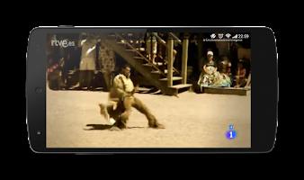 Screenshot of TV TDT Online España