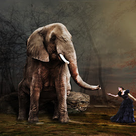 beautiful girl & elephant by Hermansyah Syah - Digital Art People