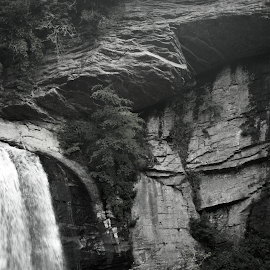 Waterfall in the Mountains by Sydney Dowd - Novices Only Landscapes ( 2014, black and white, waterfall, rock, landscape )