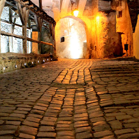 dragon scales by Cosmin Popa-Gorjanu - City,  Street & Park  Historic Districts ( street, night, castle, medieval, gate, pavement )