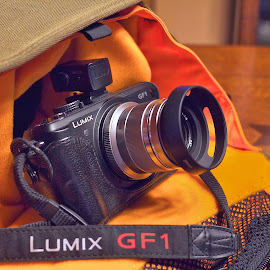 GF1 / Oly 45mm by Alan Roseman - Artistic Objects Technology Objects ( crumpled, canon, technology, gf1, camera, micro four thirds, digital, digital camera, m43, camera bag, adapted lens, not pick of stack, panasonic, objects,  )