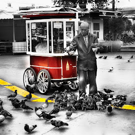 Istanbul by Ева Йорданова - City,  Street & Park  Street Scenes ( pigeons, vendor, cart, istanbul )