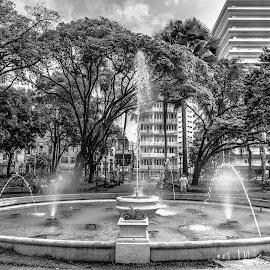 Chafariz do Campo Grande by Aldemir Vieira - City,  Street & Park  City Parks ( praça, brazil, bahia, salvador, brasil, campo grande )
