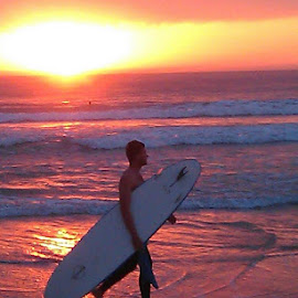 A surfer at Sunrise by Paul Coore - Sports & Fitness Surfing