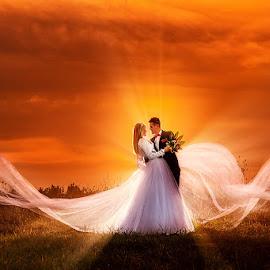 wedding by Dejan Nikolic Fotograf Krusevac - Wedding Bride & Groom ( kraljevo, wedding photography, aleksandrovac, vencanje, jagodina, novi sad, paracin, wedding dress, banja, vrnjacja banja, wedding, wedding day, krusevac, svadba, kragujevac, fotograf )