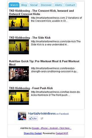 Martial Arts Wellness