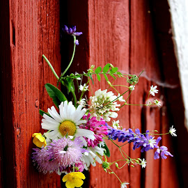 wild flowers on the barn door by Mona Martinsen - Artistic Objects Still Life (  )