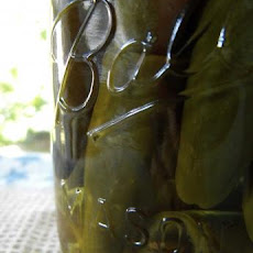 Pickled Hot Jalapeno Peppers