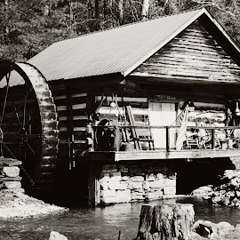 The Mill by Angee Cox Randolph - Buildings & Architecture Public & Historical ( water, cabin, old, wheel, old town )