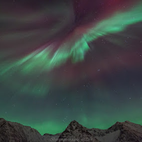 Aurora over mountains by Benny Høynes - Landscapes Starscapes ( canon, mountains, auroras, northernlights, colours, norway )
