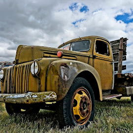 Old Truck by Barbara Brock - Transportation Other ( rusty truck, truck in the field, old truck )