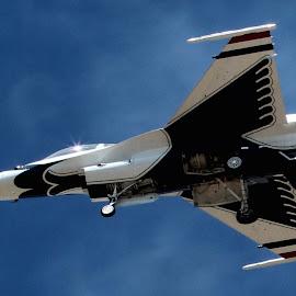 Over my head by Karin Bennett - Transportation Airplanes ( f-16, air show, thunderbirds,  )
