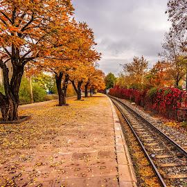 train station by Hasim Sahin - Landscapes Travel ( red, autumn, ankara, kurtuluş, turkey )