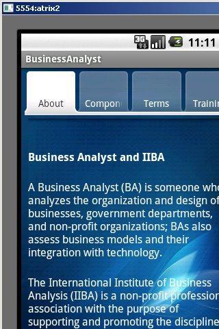 BusinessAnalyst