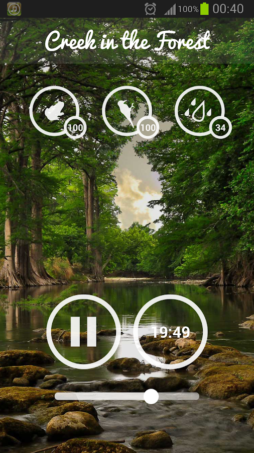Forest Sounds - Nature & Sleep Screenshot 6