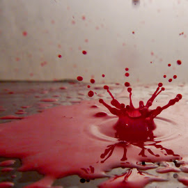 Red explotion by Anthony Doyle - Abstract Water Drops & Splashes (  )