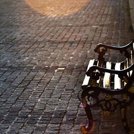 Public Bench by Dhruva Kumar - Buildings & Architecture Public & Historical ( public benches, public, bench, furniture, object )