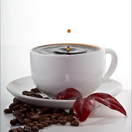 Black Coffee by Rudi Kleynhans - Food & Drink Alcohol & Drinks